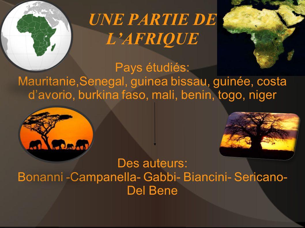 UNE PARTIE DE LAFRIQUE Pays étudiés: Mauritanie,Senegal, guinea bissau, guinée, costa davorio, burkina faso, mali, benin, togo, niger Des auteurs: Bon