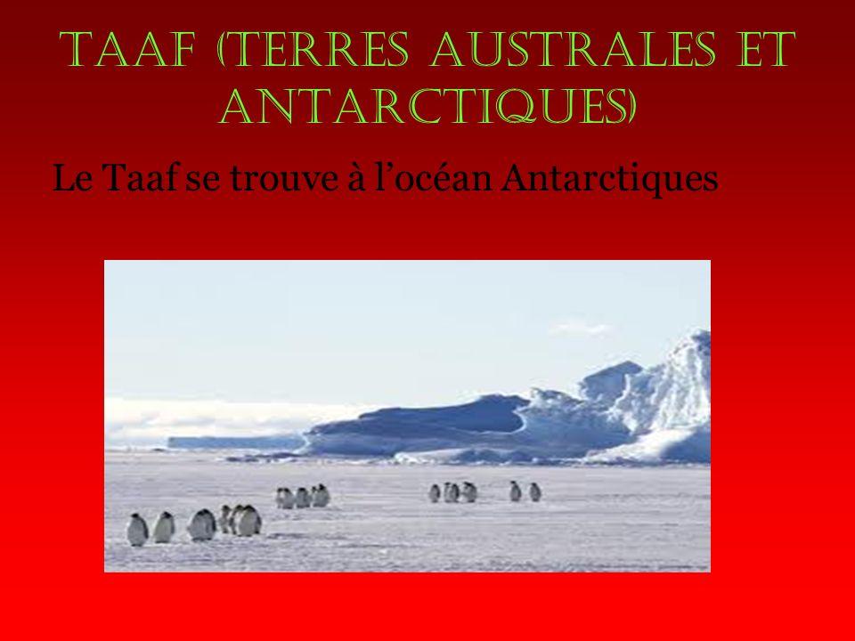 Taaf (terres australes et antarctiques) Le Taaf se trouve à locéan Antarctiques