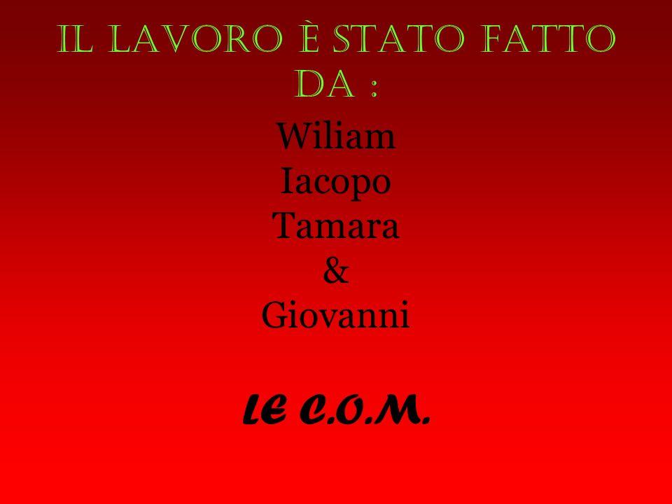 Il lavoro è stato fatto da : Wiliam Iacopo Tamara & Giovanni LE C.O.M.