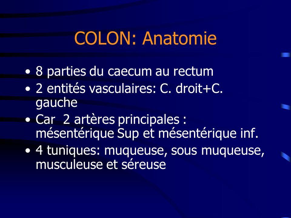 COLON: Anatomie 8 parties du caecum au rectum 2 entités vasculaires: C. droit+C. gauche Car 2 artères principales : mésentérique Sup et mésentérique i