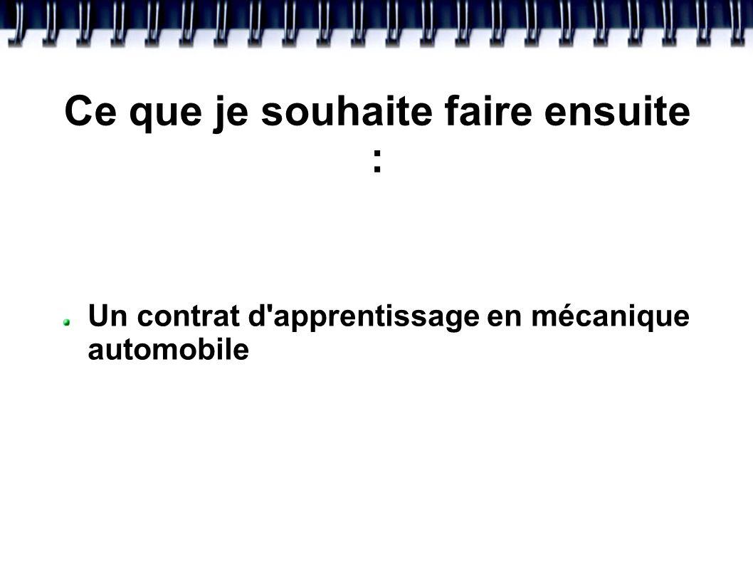 MON PARCOURS SCOLAIRE * Depuis 2008: Elève au collège Villars * 2008/2009: Préparation du CFG et du Brevet informatique