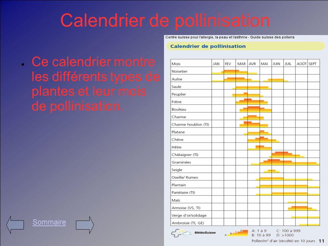 Calendrier de pollinisation Ce calendrier montre les différents types de plantes et leur mois de pollinisation. Sommaire
