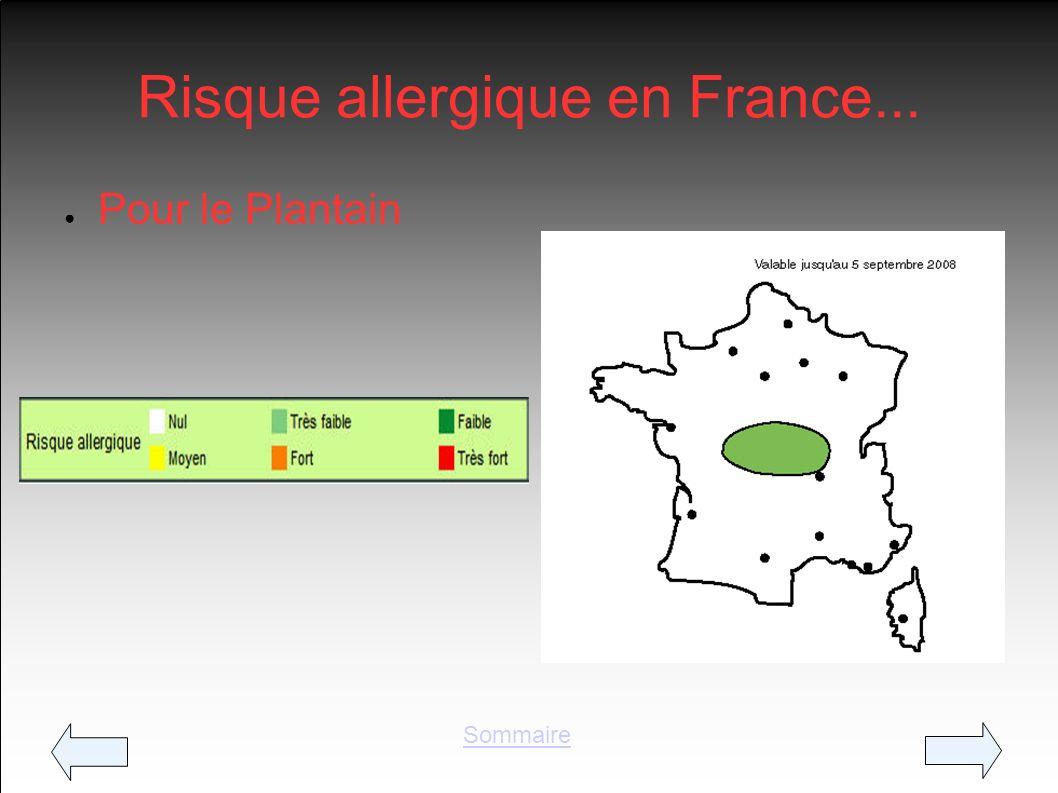 Risque allergique en France... Pour le Plantain Sommaire