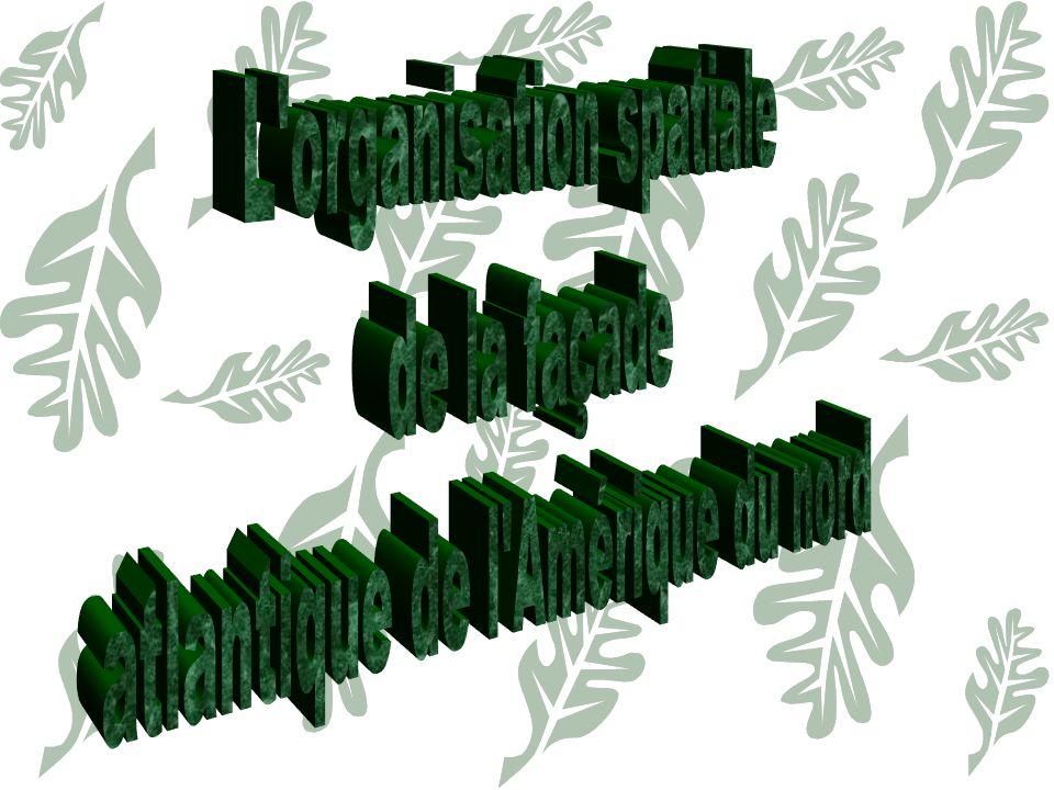 I) Lorganisation spatiale de la façade atlantique Le cœur économique de la façade, espace majeur de léconomie mondiale Son hypercentre, la Mégalopolis Les espaces dynamiques du croissant périphérique ayant bénéficié de la restructuration du manufacturing belt.
