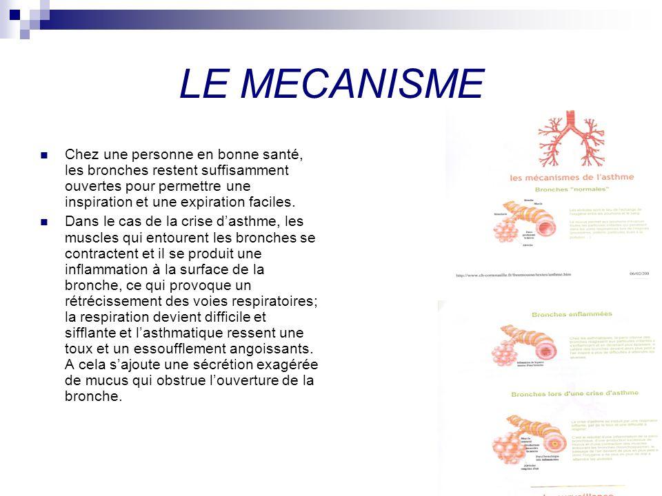 LE MECANISME Chez une personne en bonne santé, les bronches restent suffisamment ouvertes pour permettre une inspiration et une expiration faciles. Da