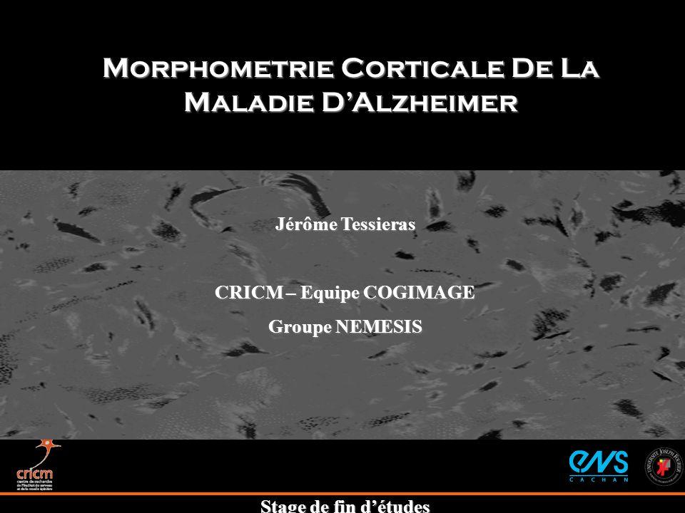 Stage de fin détudes Morphometrie Corticale De La Maladie DAlzheimer Jérôme Tessieras CRICM – Equipe COGIMAGE Groupe NEMESIS