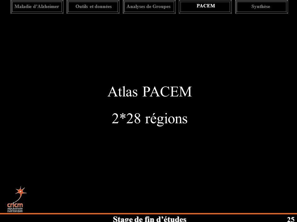 Stage de fin détudes 25 Maladie dAlzheimerAnalyses de Groupes PACEM SynthèseOutils et données Atlas PACEM 2*28 régions