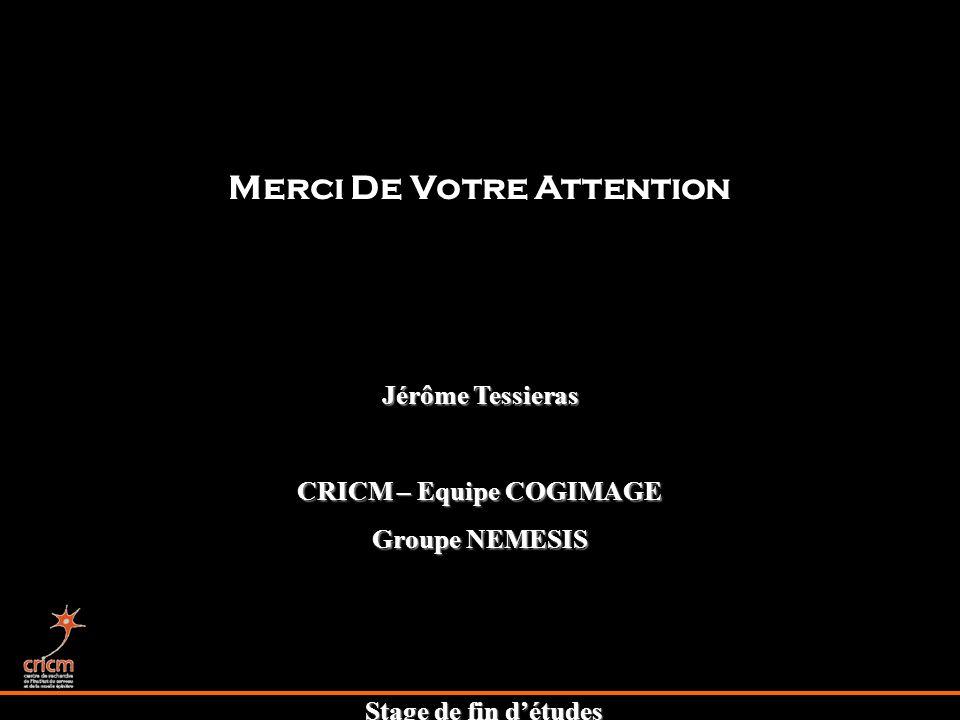 Stage de fin détudes Merci De Votre Attention Jérôme Tessieras CRICM – Equipe COGIMAGE Groupe NEMESIS