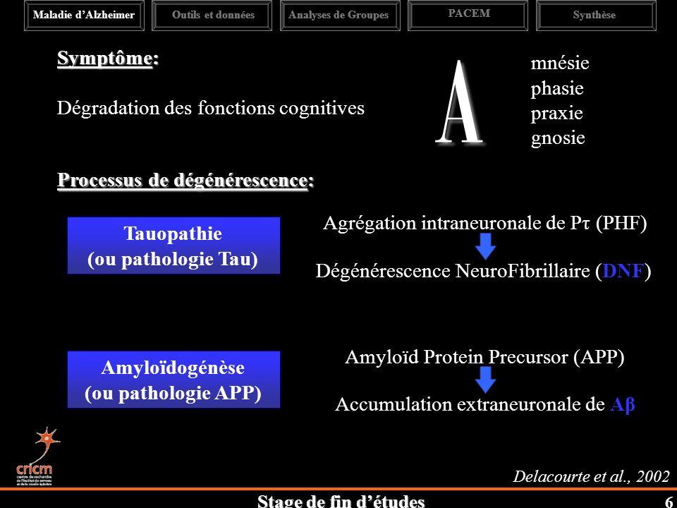 Stage de fin détudes Symptôme: Dégradation des fonctions cognitives A mnésie phasie praxie gnosie Amyloïd Protein Precursor (APP) Amyloïdogénèse (ou pathologie APP) Accumulation extraneuronale de Aβ Processus de dégénérescence: Delacourte et al., 2002 Agrégation intraneuronale de Pτ (PHF) Tauopathie (ou pathologie Tau) Dégénérescence NeuroFibrillaire (DNF) Maladie dAlzheimerAnalyses de Groupes PACEM SynthèseOutils et données 6