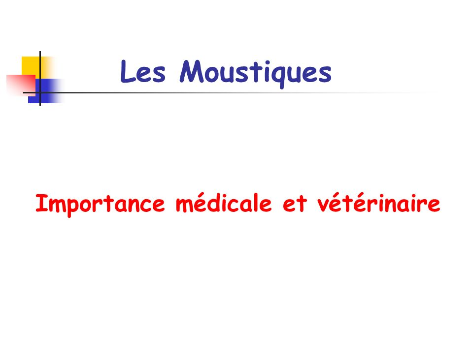 Les Moustiques Importance médicale et vétérinaire