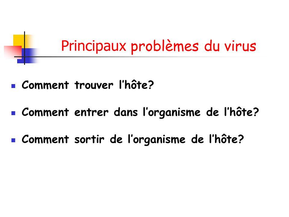 Principaux problèmes du virus Comment trouver lhôte.