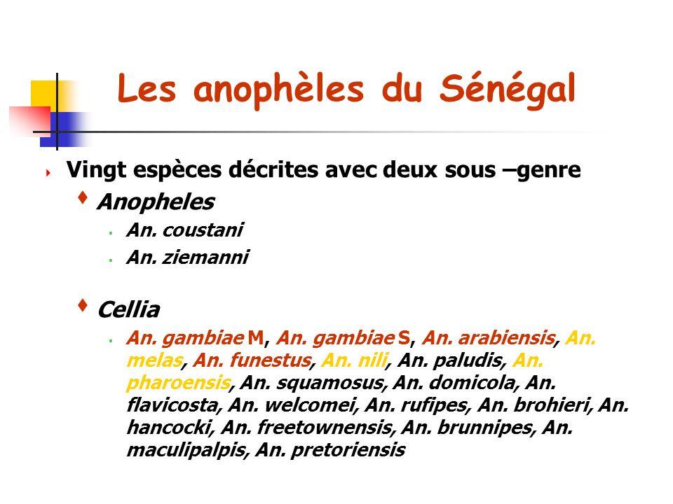 Les anophèles du Sénégal Vingt espèces décrites avec deux sous –genre Anopheles An.