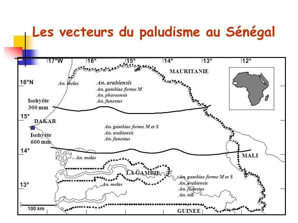 An. melas Les vecteurs du paludisme au Sénégal