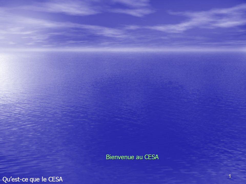1 Bienvenue au CESA Quest-ce que le CESA
