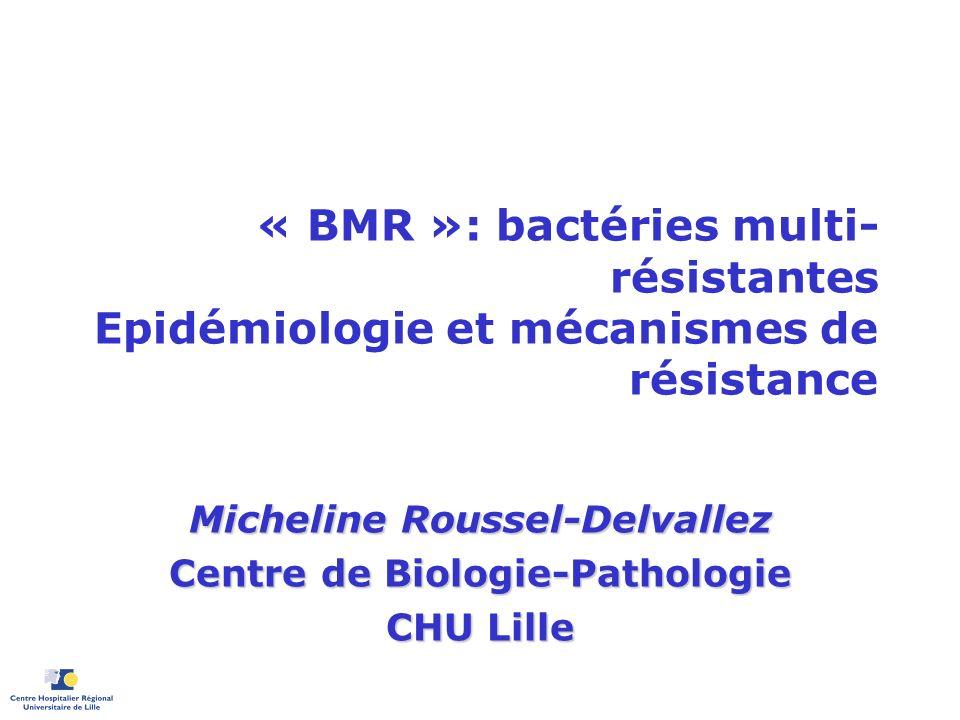 « BMR »: bactéries multi- résistantes Epidémiologie et mécanismes de résistance Micheline Roussel-Delvallez Centre de Biologie-Pathologie CHU Lille