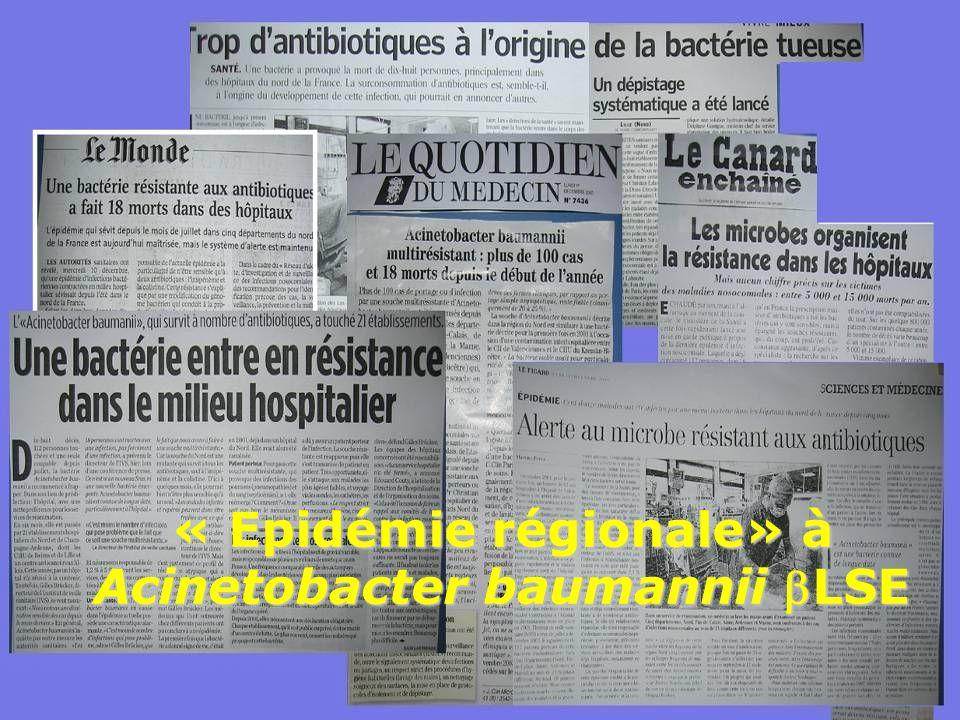 « Epidémie régionale» à Acinetobacter baumannii LSE