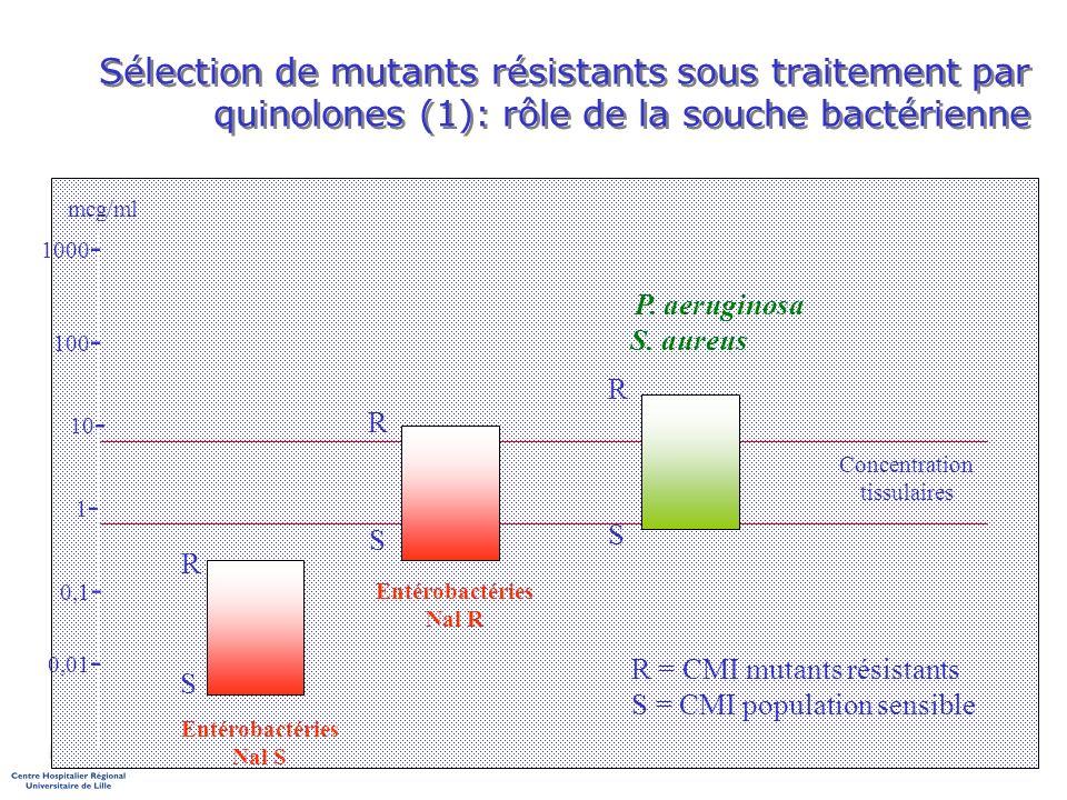 Sélection de mutants résistants sous traitement par quinolones (1): rôle de la souche bactérienne 0,01 - 0,1 - 1-1- 10 - 100 - 1000 - mcg/ml Concentra