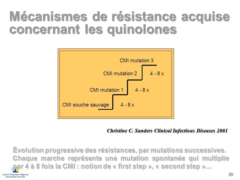 CMI souche sauvage CMI mutation 1 CMI mutation 2 CMI mutation 3 4 - 8 x Mécanismes de résistance acquise concernant les quinolones Christine C. Sander