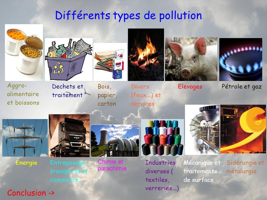 Différents types de pollution Aggro- alimentaire et boissons Dechets et traitement Bois, papier, carton Divers (feux...) et services ElevagesPétrole e