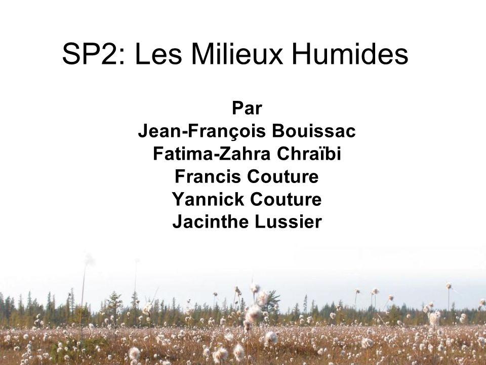 SP2: Les Milieux Humides Par Jean-François Bouissac Fatima-Zahra Chraïbi Francis Couture Yannick Couture Jacinthe Lussier