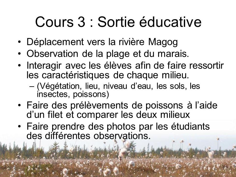 Cours 3 : Sortie éducative Déplacement vers la rivière Magog Observation de la plage et du marais. Interagir avec les élèves afin de faire ressortir l