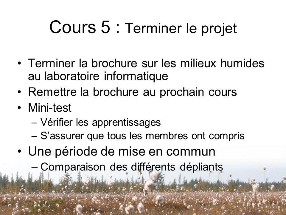 Cours 5 : Terminer le projet Terminer la brochure sur les milieux humides au laboratoire informatique Remettre la brochure au prochain cours Mini-test
