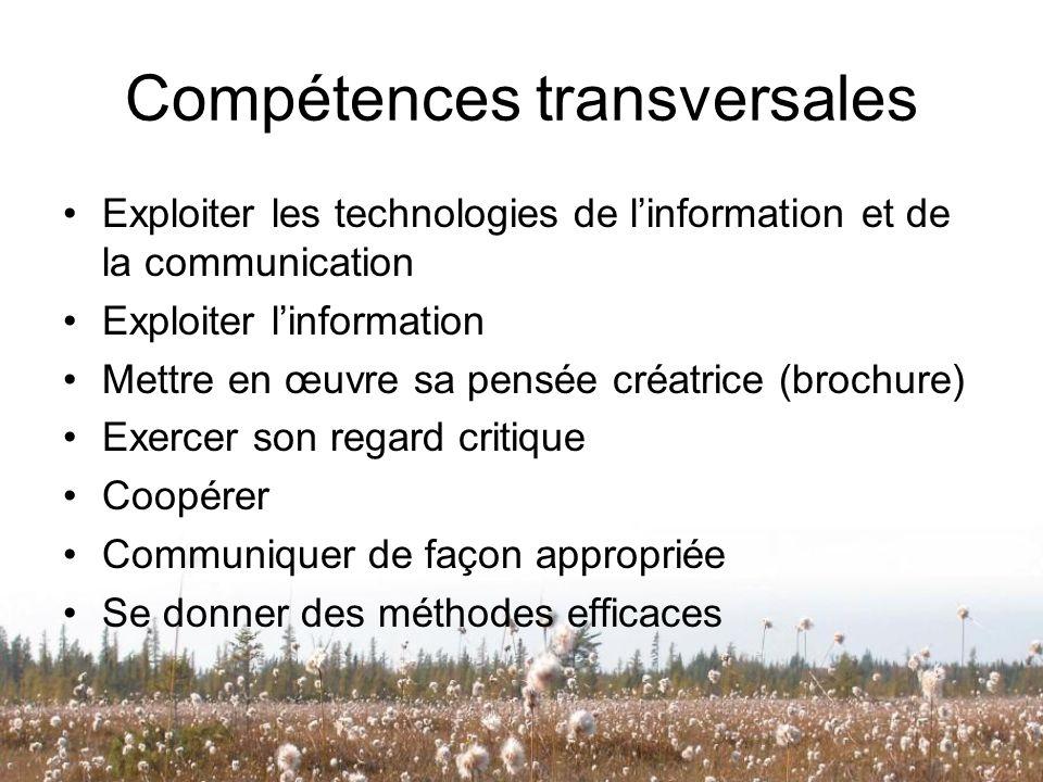 Compétences transversales Exploiter les technologies de linformation et de la communication Exploiter linformation Mettre en œuvre sa pensée créatrice
