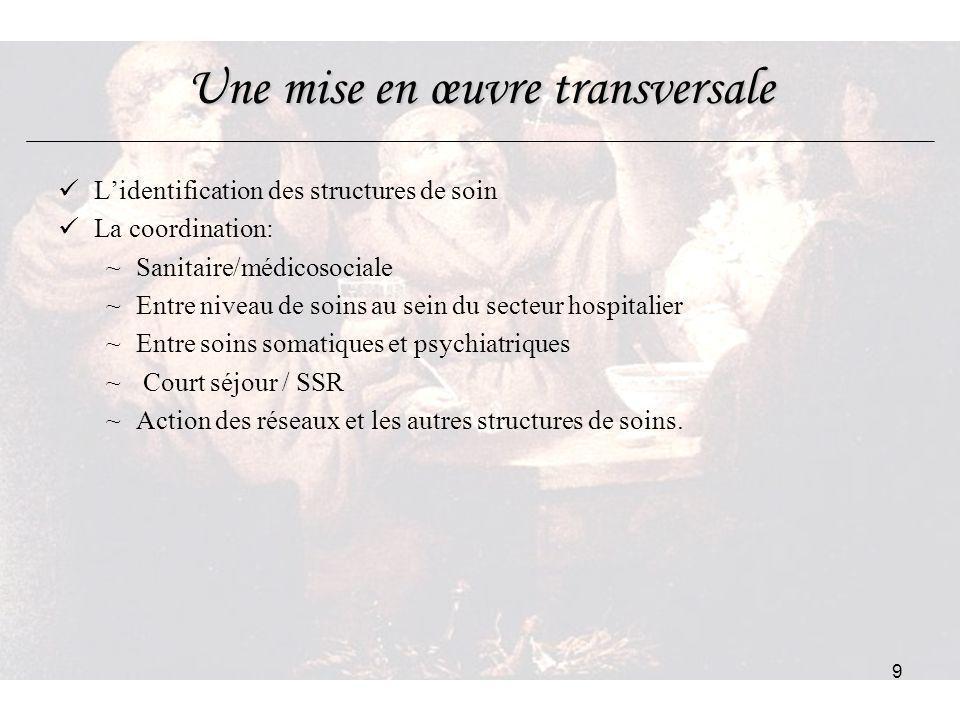 9 Une mise en œuvre transversale Lidentification des structures de soin La coordination: ~Sanitaire/médicosociale ~Entre niveau de soins au sein du se