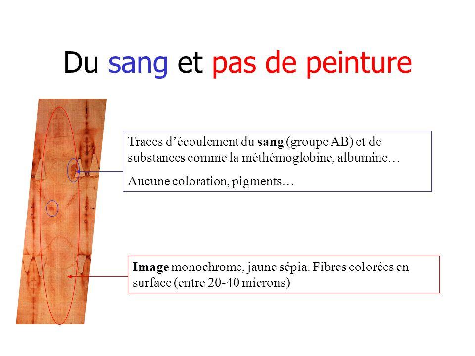 Du sang et pas de peinture Traces découlement du sang (groupe AB) et de substances comme la méthémoglobine, albumine… Aucune coloration, pigments… Image monochrome, jaune sépia.