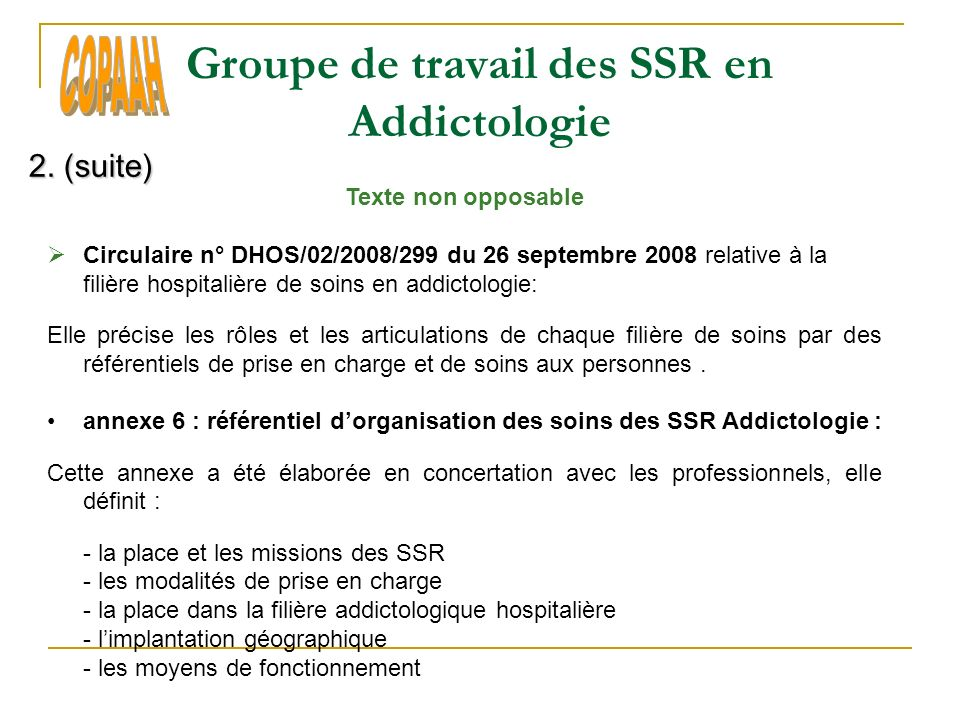 Groupe de travail des SSR en Addictologie 2.