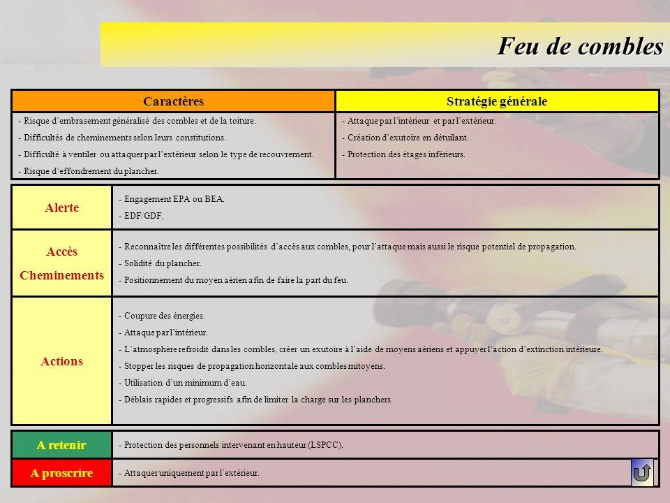 Feu de chaudière industrielle CaractèresStratégie générale - Dégagement calorifique important selon la nature du combustible utilisé.