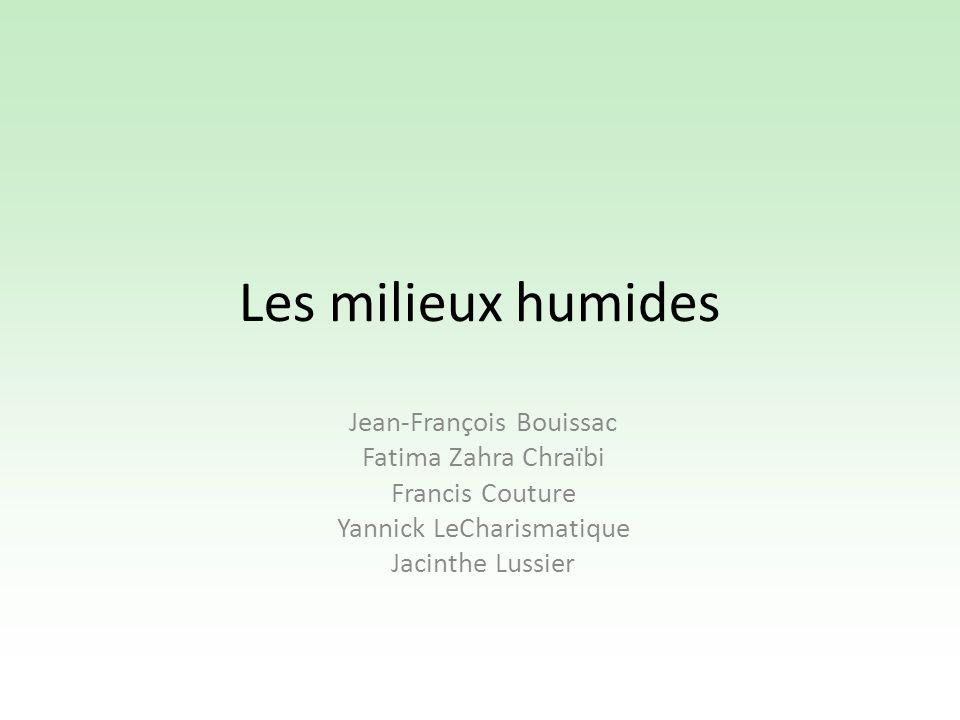Les milieux humides Jean-François Bouissac Fatima Zahra Chraïbi Francis Couture Yannick LeCharismatique Jacinthe Lussier