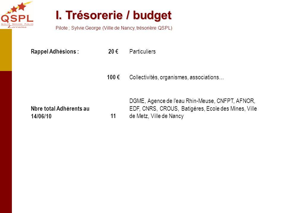 I. Trésorerie / budget Pilote ; Sylvie George (Ville de Nancy, trésorière QSPL) Rappel Adhésions :20 Particuliers 100 Collectivités, organismes, assoc