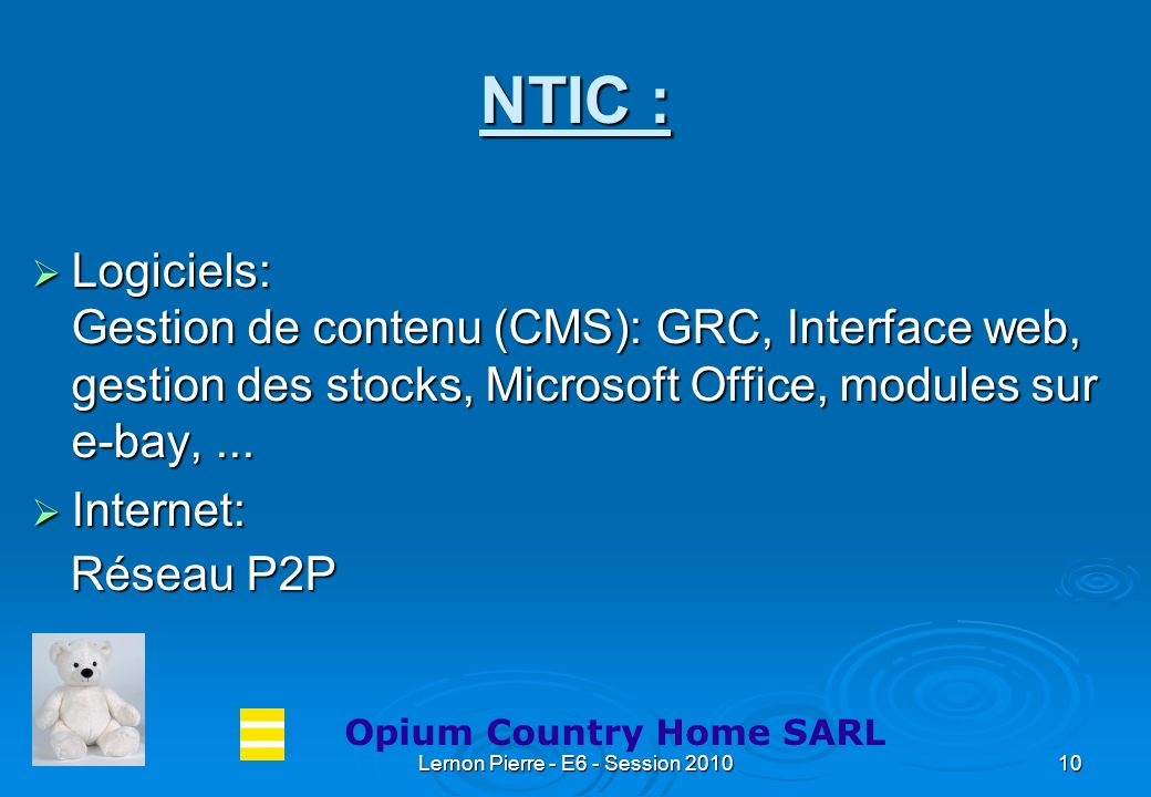Lernon Pierre - E6 - Session 201010 NTIC : Logiciels: Gestion de contenu (CMS): GRC, Interface web, gestion des stocks, Microsoft Office, modules sur