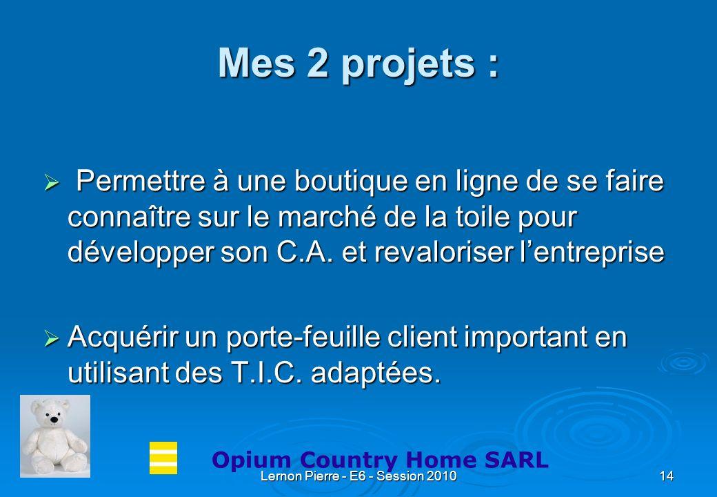 Lernon Pierre - E6 - Session 201014 Mes 2 projets : Permettre à une boutique en ligne de se faire connaître sur le marché de la toile pour développer