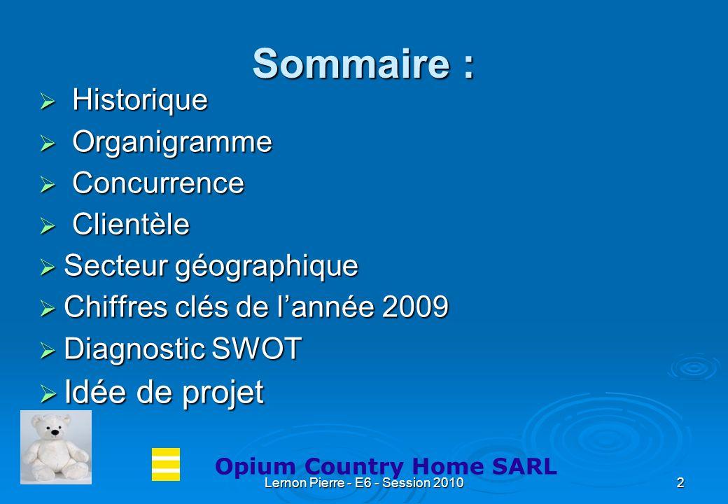 Lernon Pierre - E6 - Session 20102 Sommaire : Historique Historique Organigramme Organigramme Concurrence Concurrence Clientèle Clientèle Secteur géog