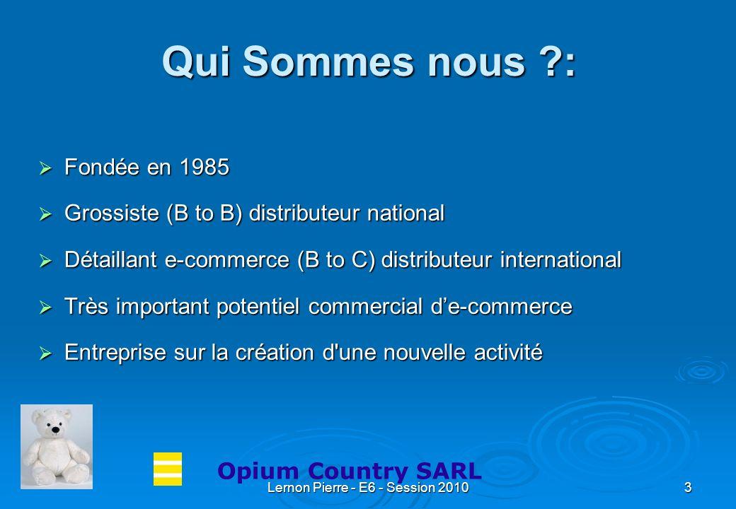Lernon Pierre - E6 - Session 20104 Organigramme : Opium Country Home SARL Directeur général : Mr J.