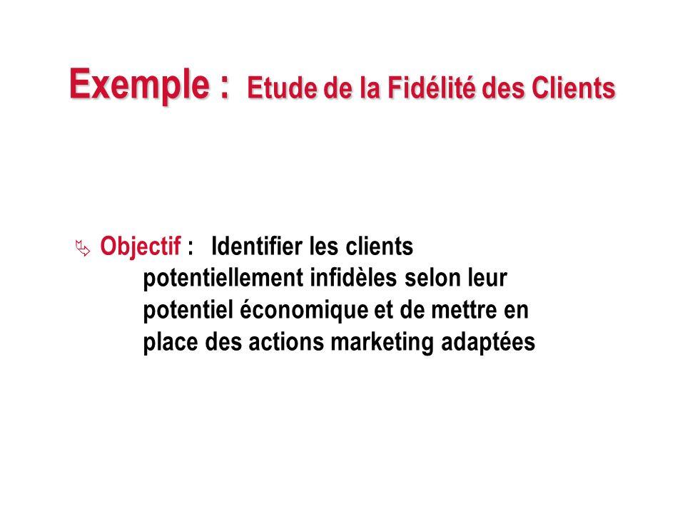 Exemple : Etude de la Fidélité des Clients Objectif : Identifier les clients potentiellement infidèles selon leur potentiel économique et de mettre en