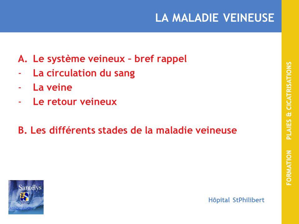 FORMATION PLAIES & CICATRISATIONS Hôpital StPhilibert LA MALADIE VEINEUSE