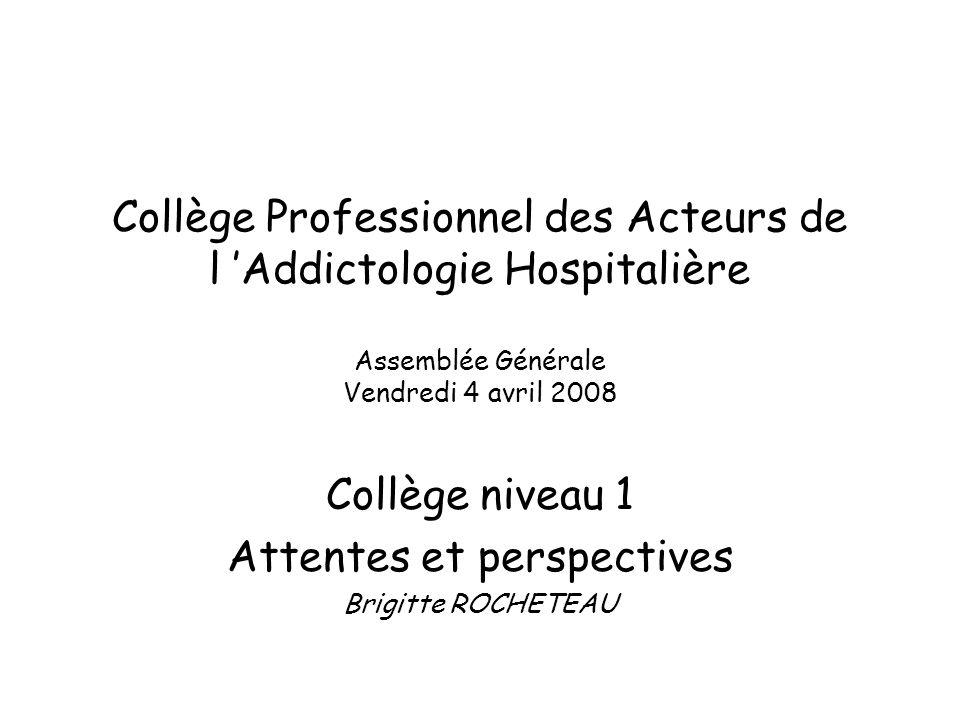 Collège Professionnel des Acteurs de l Addictologie Hospitalière Assemblée Générale Vendredi 4 avril 2008 Collège niveau 1 Attentes et perspectives Brigitte ROCHETEAU