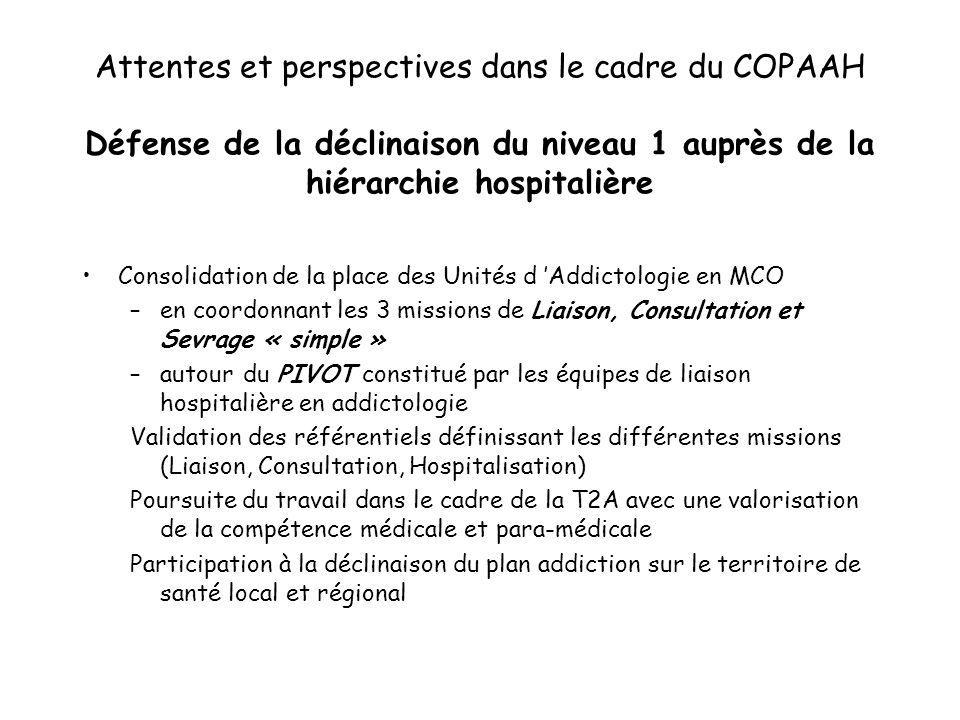 Attentes et perspectives dans le cadre du COPAAH Défense de la déclinaison du niveau 1 auprès de la hiérarchie hospitalière Consolidation de la place