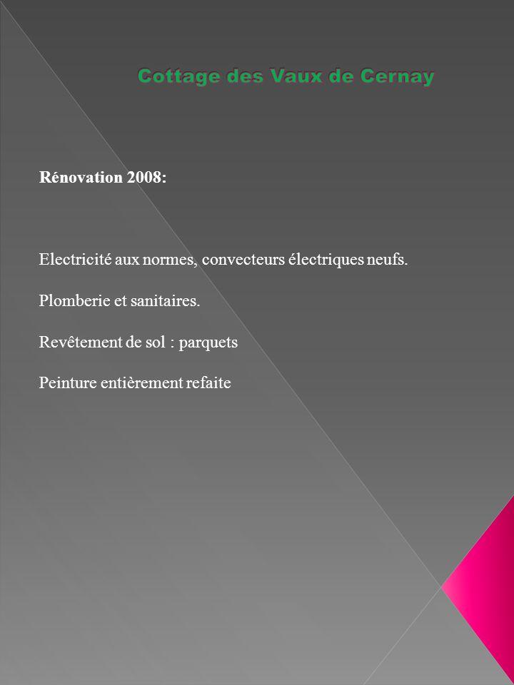 Rénovation 2008: Electricité aux normes, convecteurs électriques neufs.