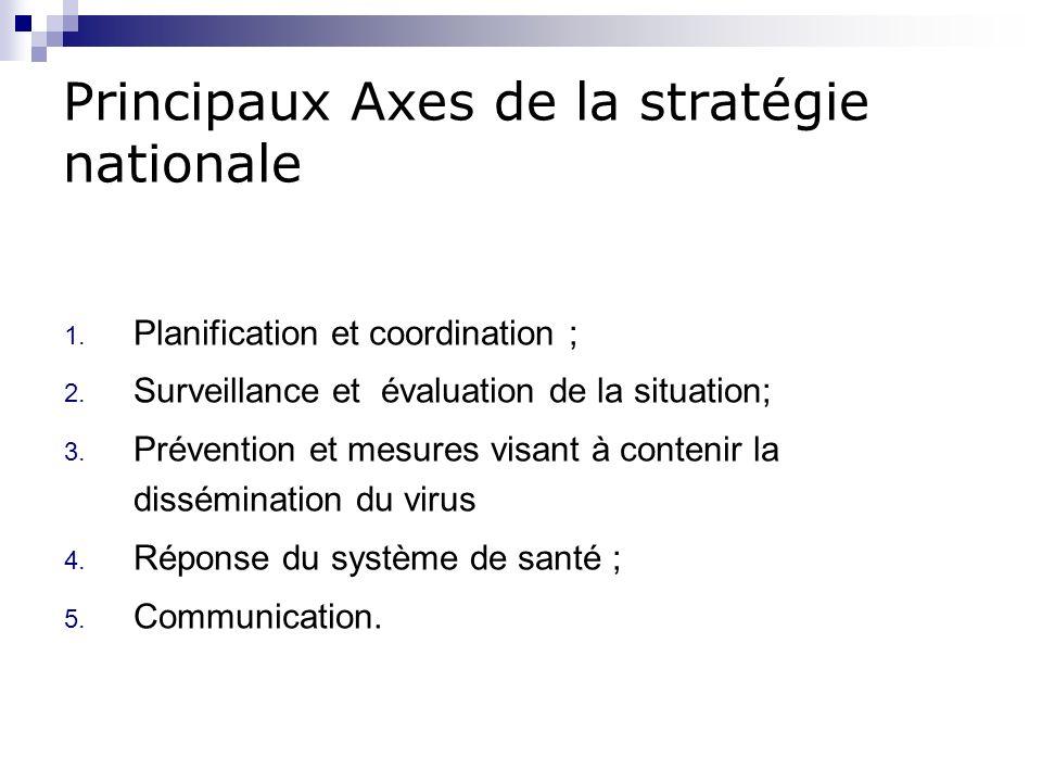 Principaux Axes de la stratégie nationale 1. Planification et coordination ; 2. Surveillance et évaluation de la situation; 3. Prévention et mesures v