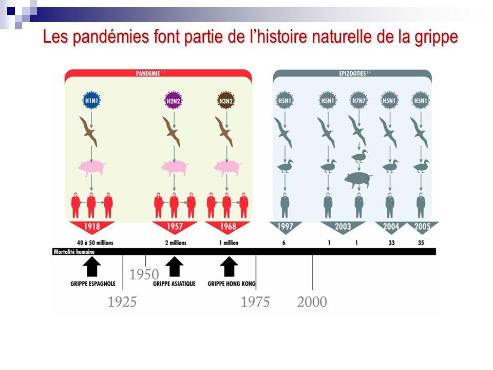Les pandémies font partie de lhistoire naturelle de la grippe