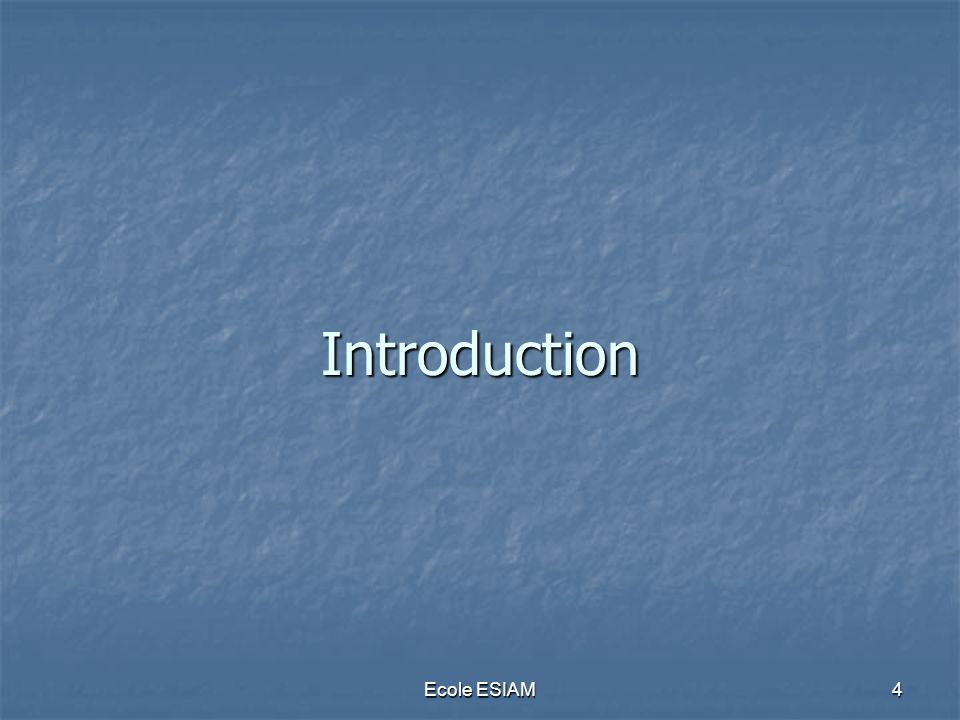 Ecole ESIAM4 Introduction