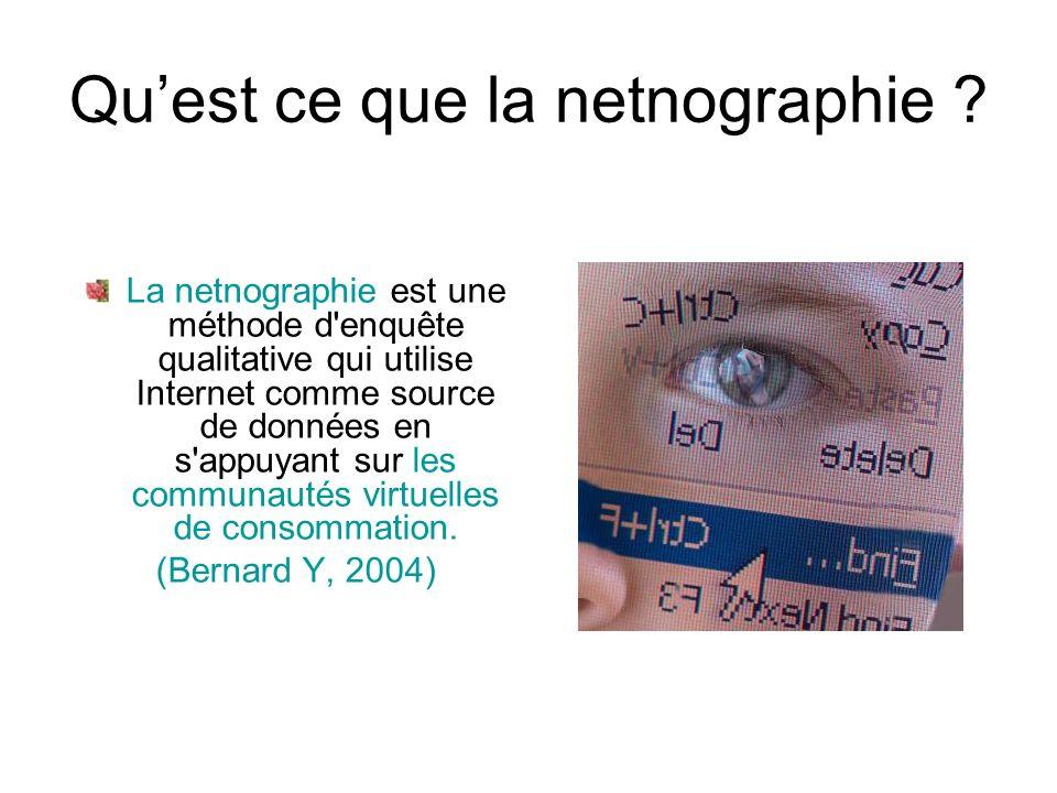 Quest ce que la netnographie .