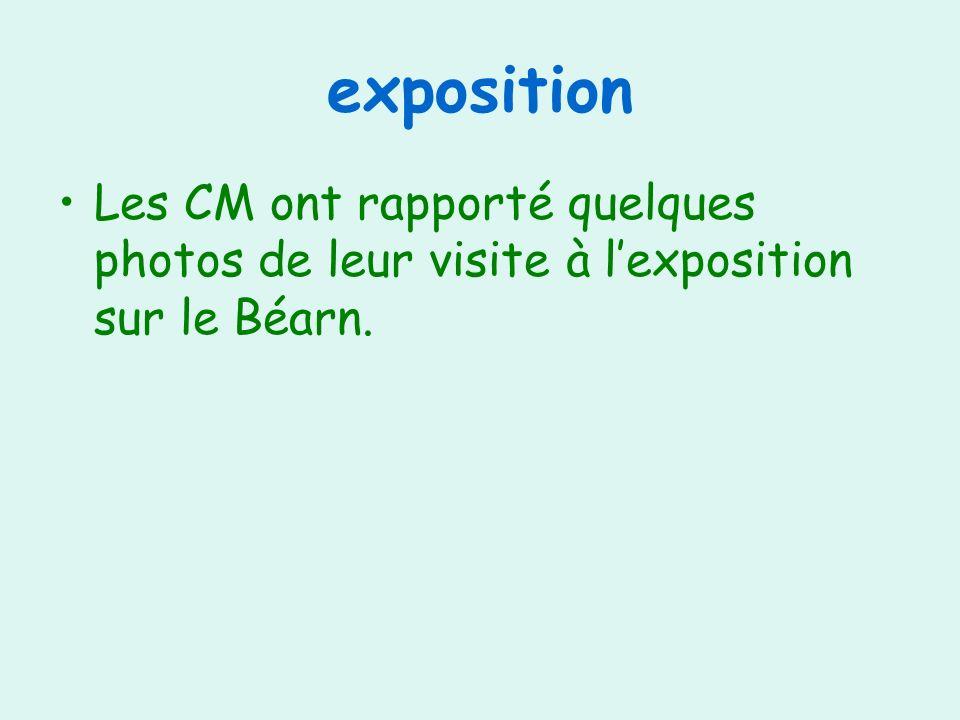 exposition Les CM ont rapporté quelques photos de leur visite à lexposition sur le Béarn.