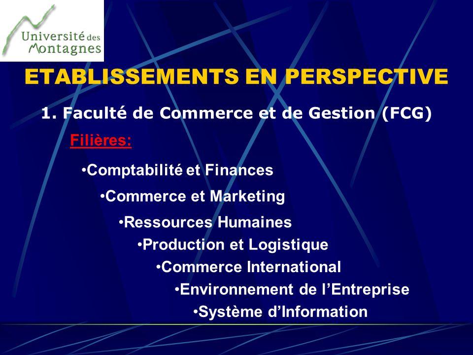 ETABLISSEMENTS EN PERSPECTIVE 1. Faculté de Commerce et de Gestion (FCG) Comptabilité et Finances Commerce et Marketing Ressources Humaines Production