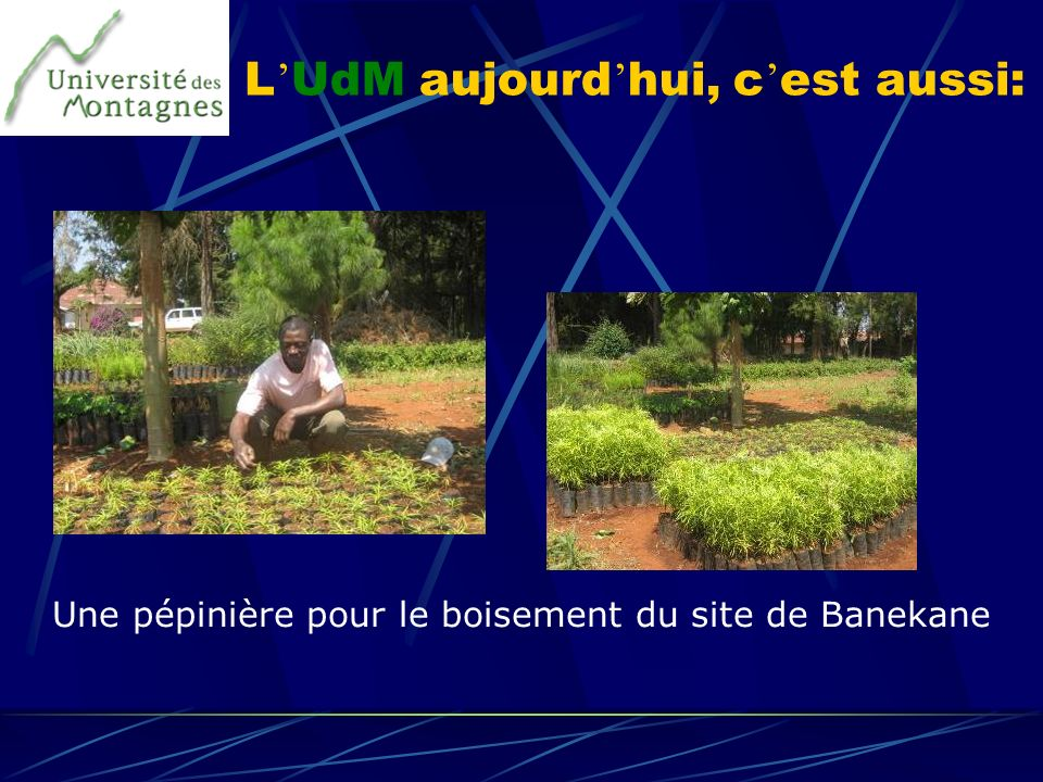 L UdM aujourd hui, c est aussi: Une pépinière pour le boisement du site de Banekane