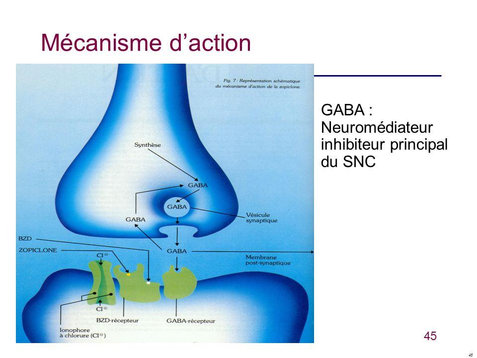 45 Mécanisme daction GABA : Neuromédiateur inhibiteur principal du SNC
